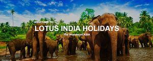 Lotus India 2