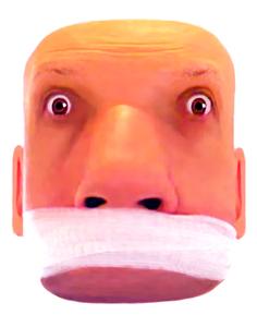 head2_enhanced_white_bg