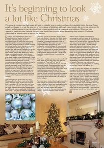 Christmas decoration article