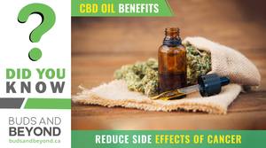 5_CBD-Side-effects-Cancer