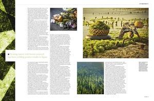 Luxury: Seaweed saving the world