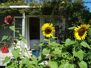 Seabird Cottage, Whangarei Heads