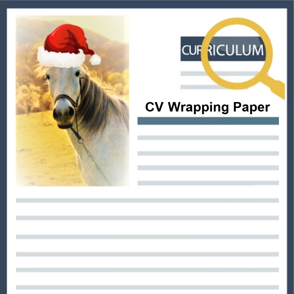 will your cv be used as wrapping paper this christmas 9 out of 10