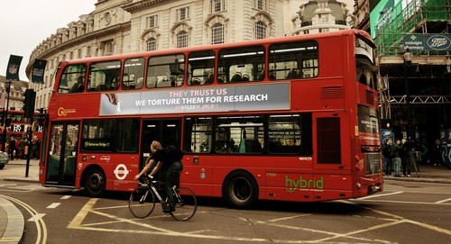 Go Vegan World Bus Ad