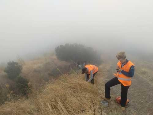 El Hierro's Famous Fog