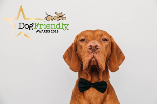 The DogFriendly Awards