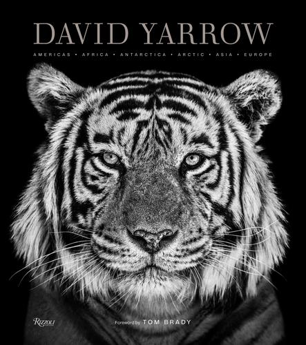 ©️ David Yarrow by David Yarrow, Rizzoli