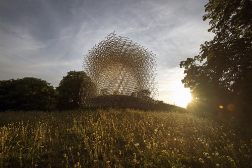 The Hive and wildflower meadow