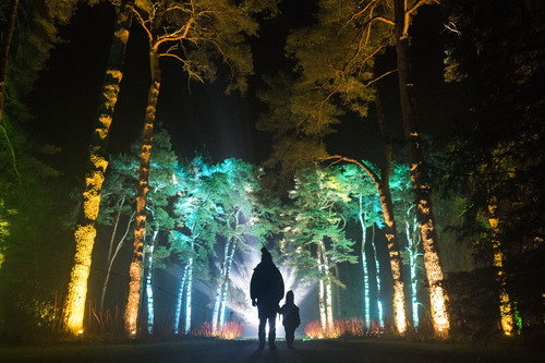 WESTONBIRT&rsquoS NEW ENCHANTED CHRISTMAS