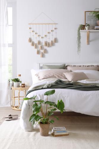 Mindful Living Wellness Denver Bed £219