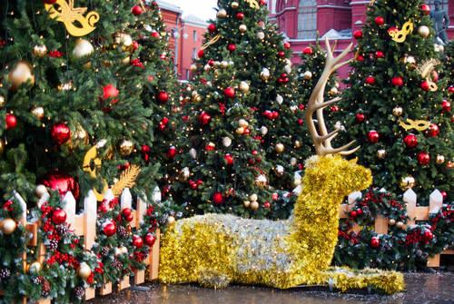 Festive Christmas Puzzle