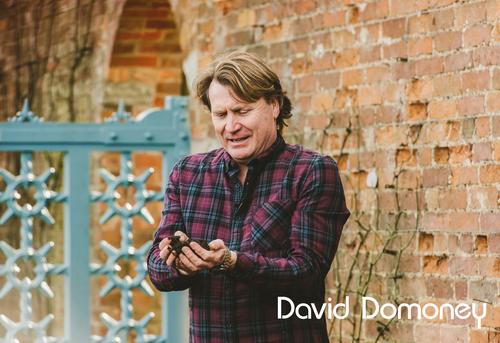Broadcaster David Domoney Compost