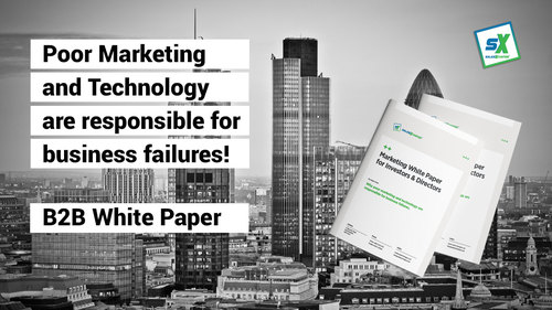 B2B Marketing White Paper