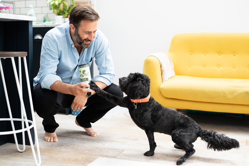 Guy Blaskey Pooch & Mutt founder+ Pepper