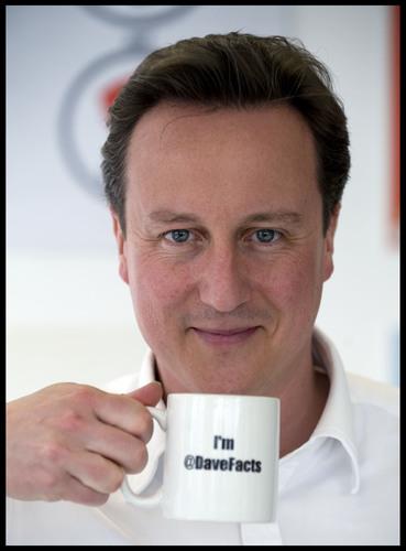 David Cameron  & DavidCameronFacts mug
