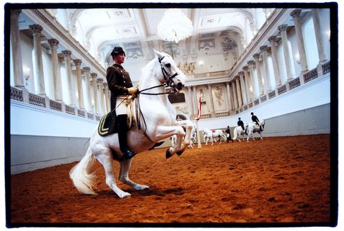 Spanish Riding School Selects Swyx