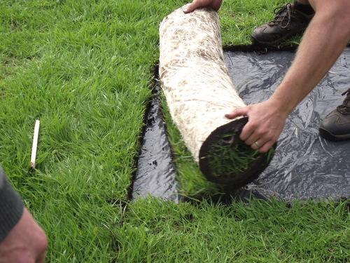 Harvesting MeadowMat