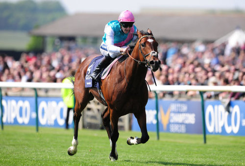 Frankel - one of Tuesday