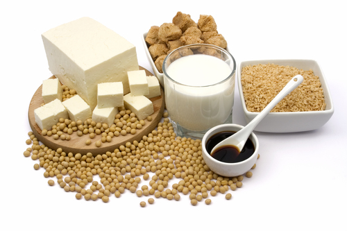 Higher Nature's Response to Soya Study