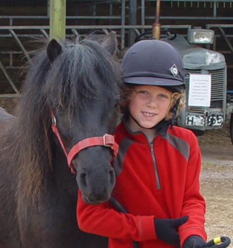 Dartmoor pony Smartie with friend Henry