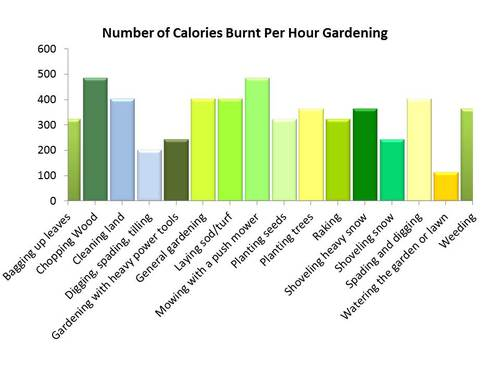 How to Lose Weight Gardening