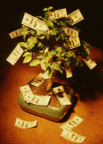 Easy, green fundraising
