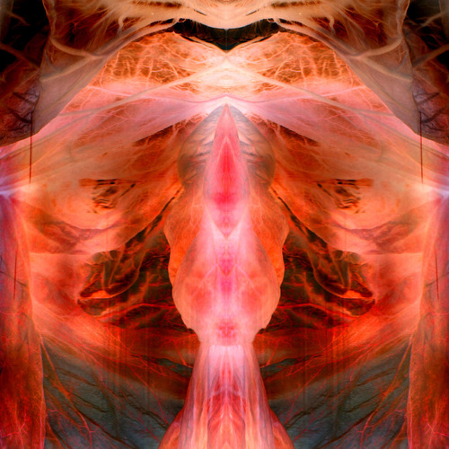 The Anihilating Angel