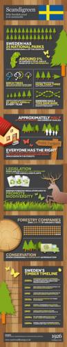 Scandigreen: Sustainable Swedish Wood