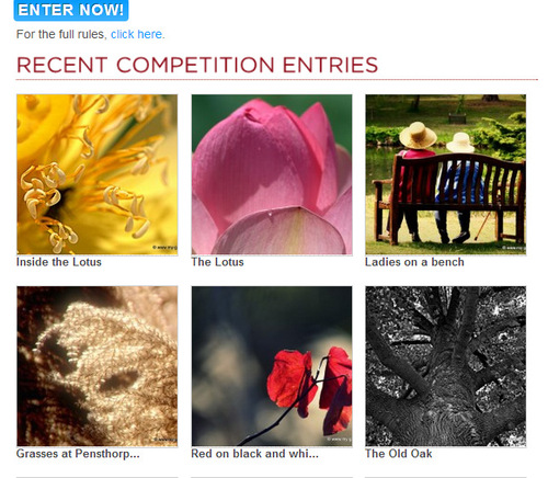 Garden Photography Competition
