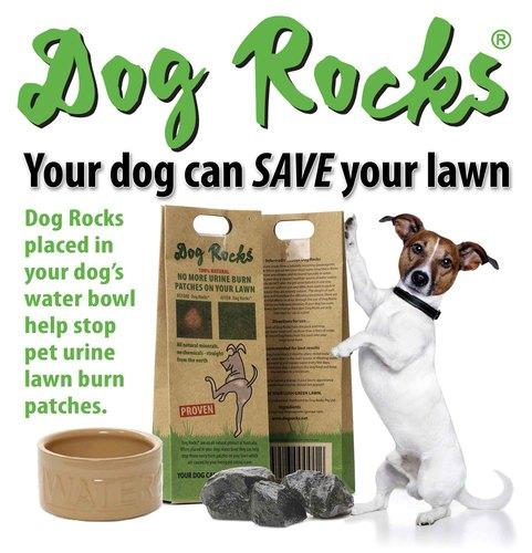 Eliminate pet urine lawn burn patches!