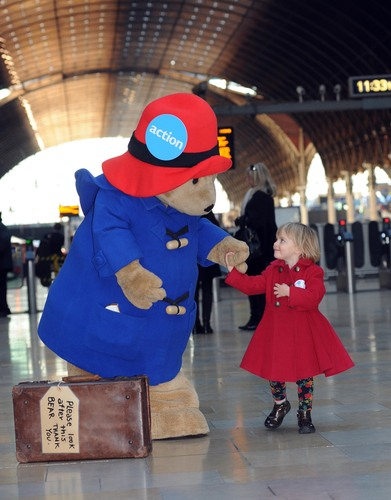Paddington Spreading Christmas Love