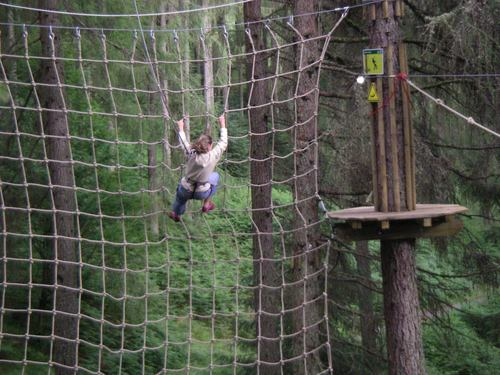 Go Ape nets its millionth customer