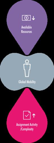 Global Mobility Survey