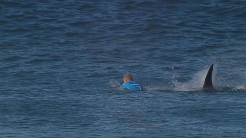 No More Yum Yum Yellow for Mick Fanning