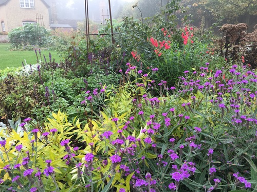 Centenary Woodland Garden