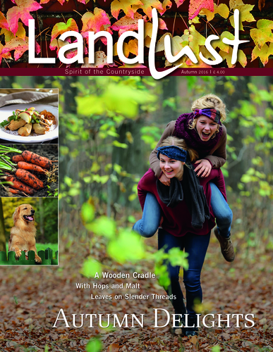 132 pages of autumn delights