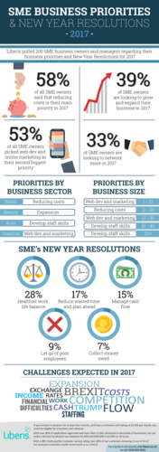 SME Business priorities infographic