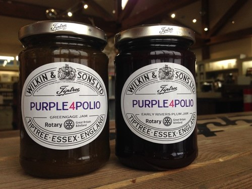 purple4polio logo - Rotary campaign