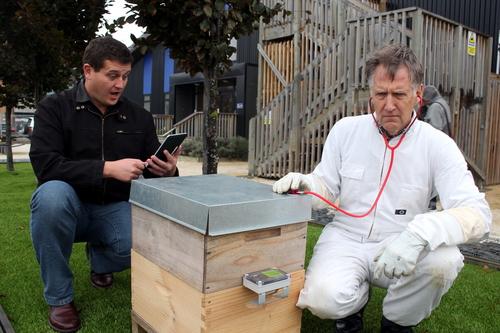Hive vets aren&#039t real. Good tools help.