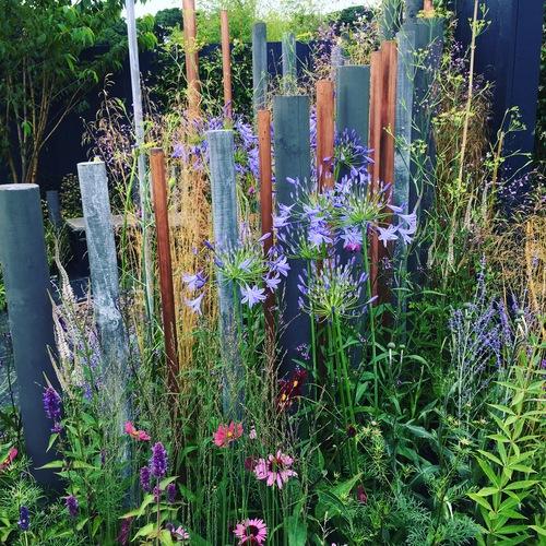 Winning garden design