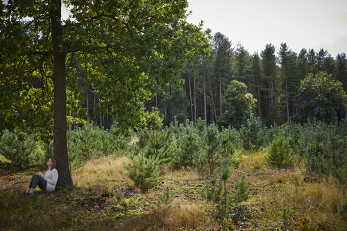 Forest Bathing at Thorpe Forest
