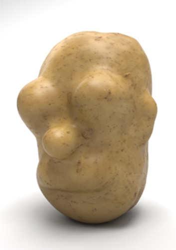 Grow Your Own Homer potato