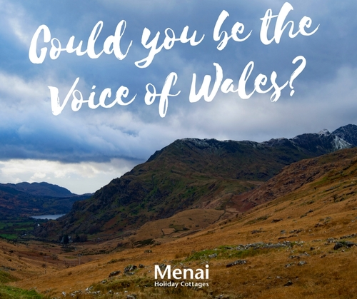 Do you have the voice of Wales?