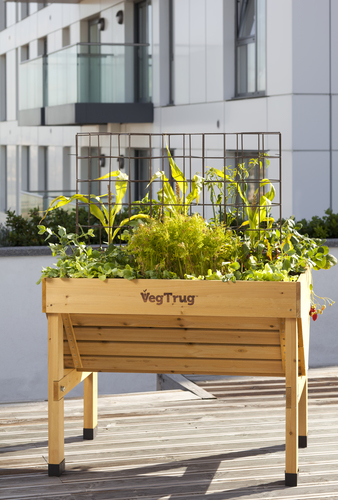 The VegTrug Classic Raised Planter