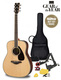 FG830 Acoustic Guitar Pack