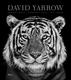 ©️ David Yarrow by David Yarrow, Rizzoli
