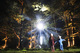 WESTONBIRT'S NEW ENCHANTED CHRISTMAS