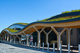 Skelton Lake Services Wildflower Roof