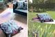 Indoor + outdoor waterproof cushions