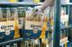 Corona Barley Straw Packaging - Fridge